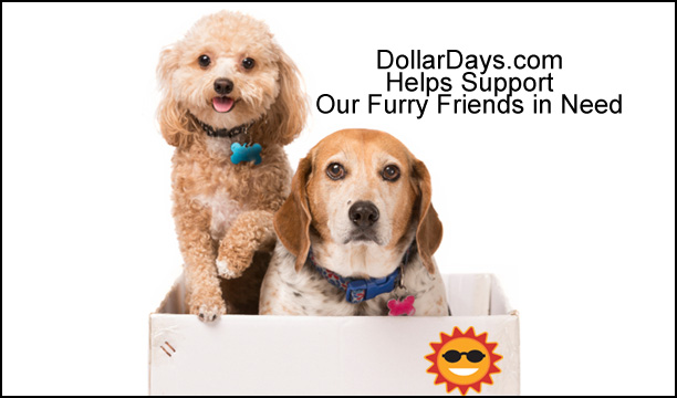 wholesale items for pet shelters