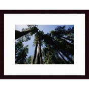 Wholesale Landscape Art - Wholesale Nature Artwork