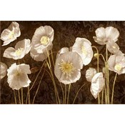 Baroque Poppies Wholesale Bulk
