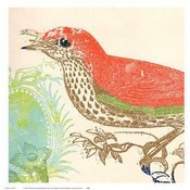 Red Bird Wholesale Bulk