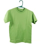Boys T Shirt Size 10/12 (L) Green