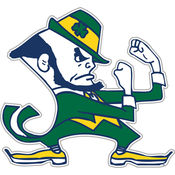 "Notre Dame Fighting Irish-12"" Vinyl Magnet"