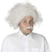 Einstein Wig Adult, White, One Size Wholesale Bulk