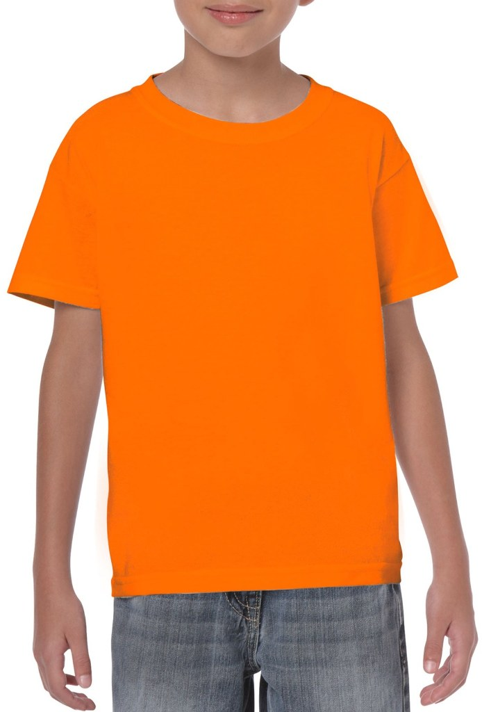 Wholesale Irregular Youth Gildan T Shirt Style 5000 Safety