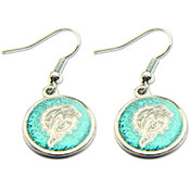 NFL Miami Dolphins Logo Earring Set
