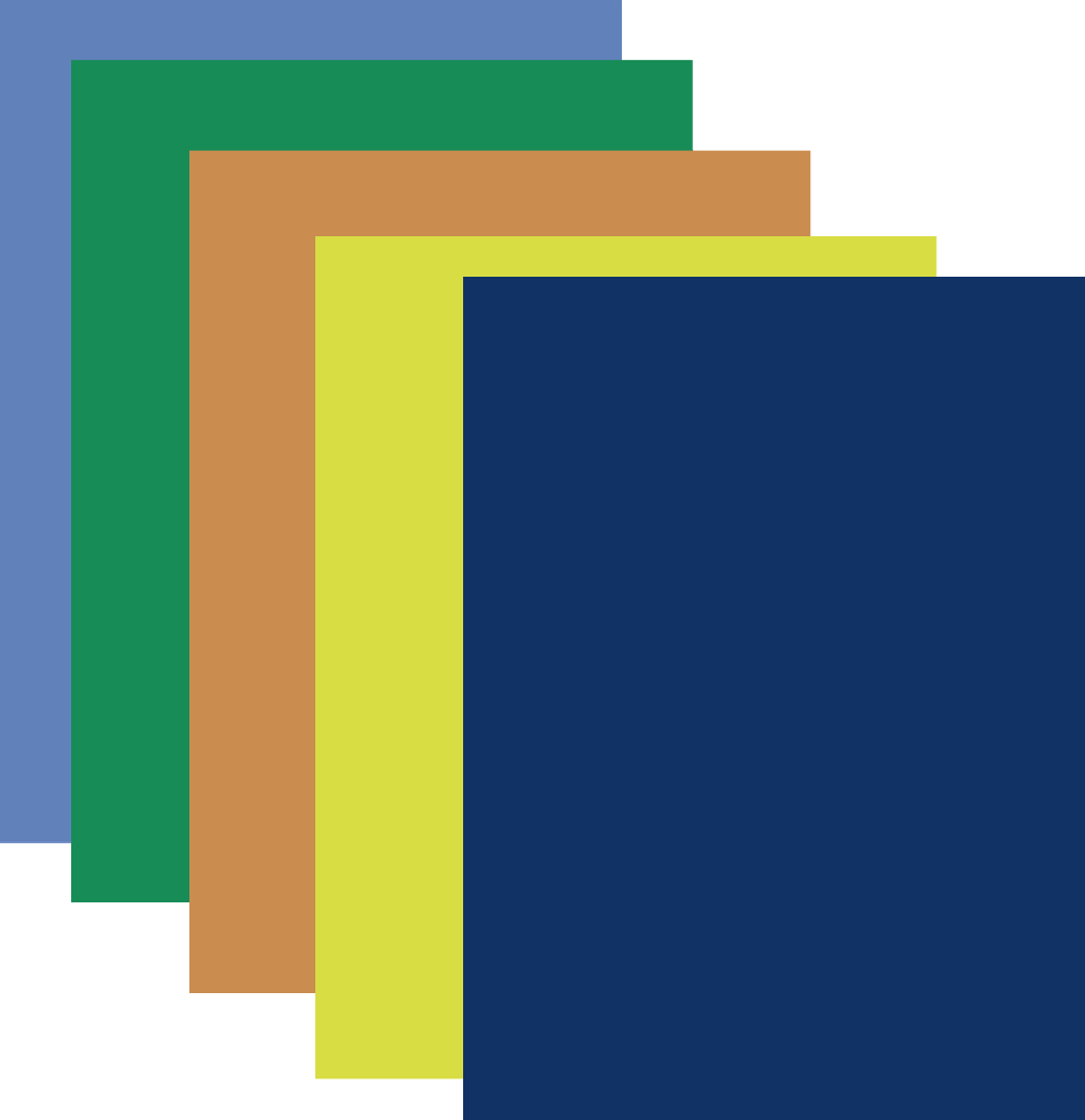 POSTER Board - Assorted Colors (1945588)