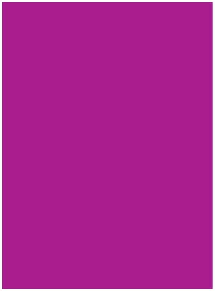 ''Neon Pink POSTERBoard - 22'''' x 28'''' [1276973]''