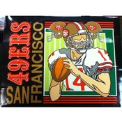 "13"" Tote Gift Bag San Francisco 49ers"