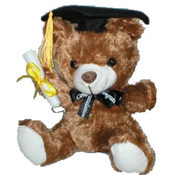 "8.5"" Graduation brown Bear with Music"