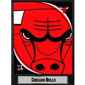 NBA Plaque- 2011 Chicago Bulls Logo