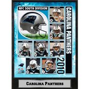 2010 Carolina Panthers 9X12 Plaque