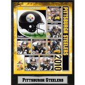 2010 AFC Champions Pittsburgh Steelers 9X12 Plaque