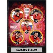 2011 Calgary Flames 9X12 Plaque