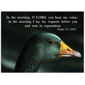 Wait on the Lord - 5&quot; X 7&quot; Flat Card