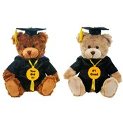 "10"" 2 Assorted Sitting Graduation Bears"