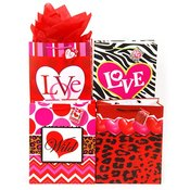 Valentine Gift Bag Medium Designs on Matte Art Paper (4 Assorted)