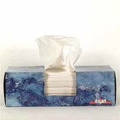 Eilat Facial Tissue