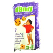 Dandy Large Pull On Training Pants 3T-4T, 32+ lbs Wholesale Bulk