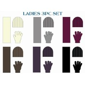Ladies 3 Piece Winter Wear Set