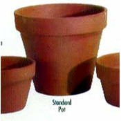 Terra Cotta Clay Pots