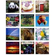 2014 16-Month Wall Calendar Assortment Wholesale Bulk