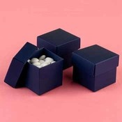 Two-Piece Favor Boxes- Navy