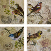 Kincaid Bird Canvas - Set of 4