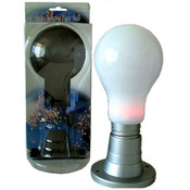 Multi Color Light Bulb in Base