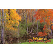 Arkansas Postcard 12158 A Small Creek Wholesale Bulk