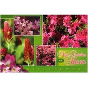 North Carolina Postcard- Wildflowers Multiview
