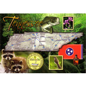 Tennessee Postcard- State Map