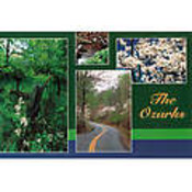 Ozarks Postcard 13037 Ozark 4 View Wholesale Bulk
