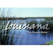 Louisiana Postcard 13206 Salt Water Marshes