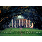 Louisiana Postcard 13212 Oak Alley Plantation