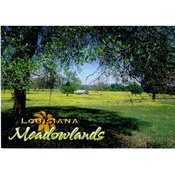 Louisiana Postcard 13215 Meadowlands