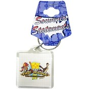 New Mexico Keychain Lucite Element