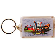 Iowa Keychain Lucite Elements