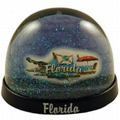 Florida Snowglobe- Elements