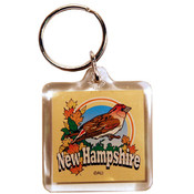 New Hampshire Keychain Lucite 3 View