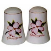 Georgia Salt and Pepper set Set Dogwood Bisque Wholesale Bulk