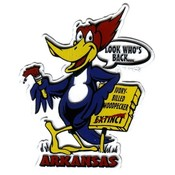 Jenkins Arkansas 2D Magnet- Woodpecker Wholesale Bulk