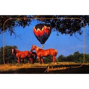 Arkansas Postcard Ar145 Horses & Balloon Wholesale Bulk