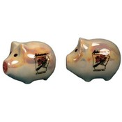 Arkansas Salt and Pepper set Set Bird/Flower Pig Wholesale Bulk