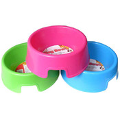 Dog Bowl in Assorted Bright Colors