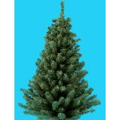 Kurt S. Adler 24' Mini Pine Christmas Tree Wholesale Bulk
