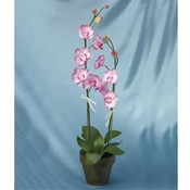 Wholesale Kigi Products Wholesale Artificial Plants and Flowers