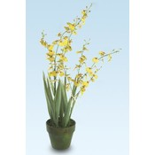 KIGI 19'H Dancing Yellow Orchid w/Pot Wholesale Bulk