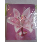Purple Flower Gift Card Holder Wholesale Bulk