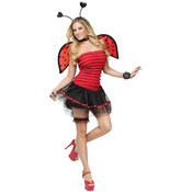 Ladybug Adult Costume Medium/Large 10-14