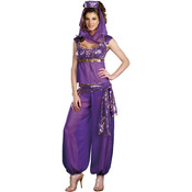 Wholesale Women's Classic Costumes - Ladies Costumes